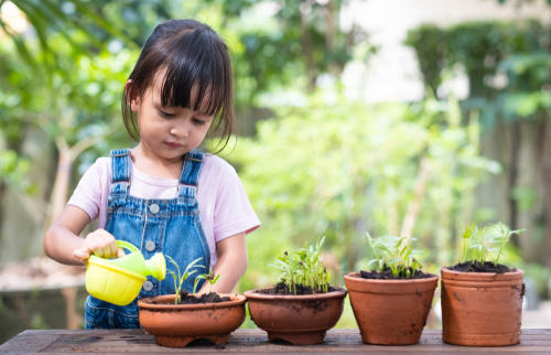 How to Disinfect and Sanitize a Preschool?