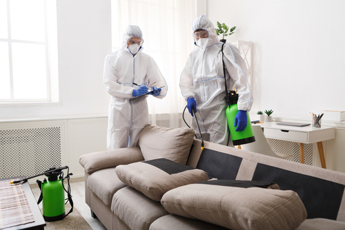 Factors To Consider When Choosing A Disinfectant